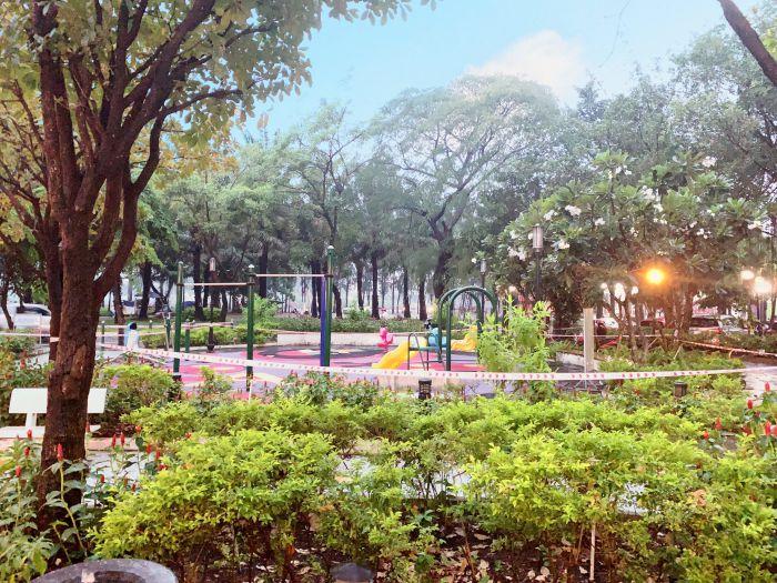 Trong công viên của chung cư citizen được chông rất nhiều các loại cây lớn nhỏ khác nha